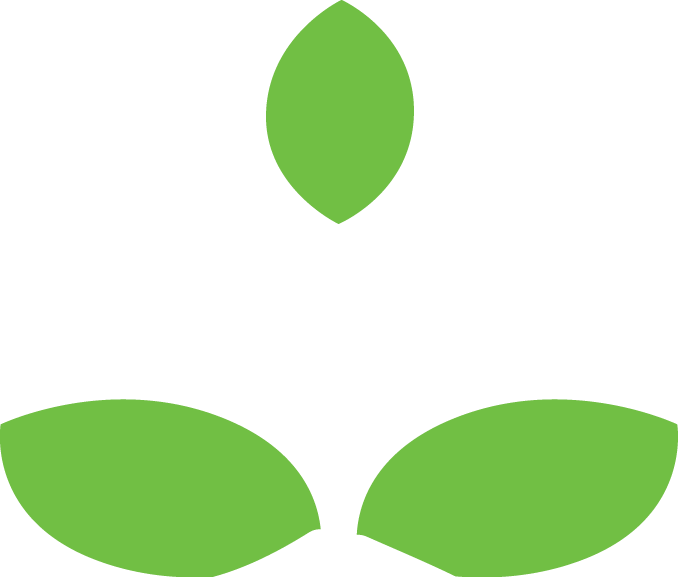 pullman leaf icon